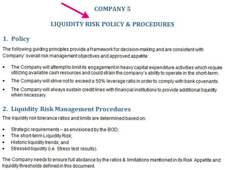 Risk Policies and Procedures